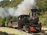 Vaser train Mocanita