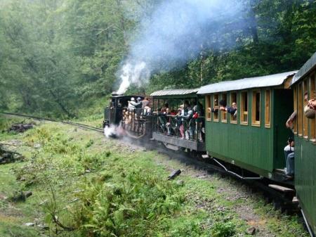 Vaser train Mocanita 4