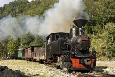 Vaser train Mocanita 3