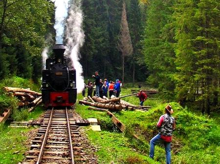 Vaser train Mocanita 0