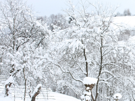 Winter in der Maramures 3