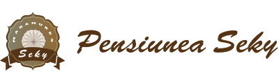 Cazare pensiune Maramures, pensiunea Seky - Salistea de Sus